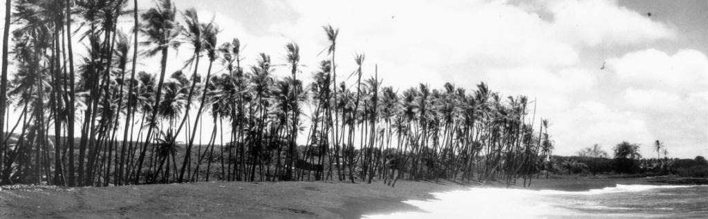Kaimu beach 1926-heading