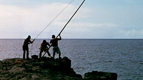 Kau Lāʻau and Maʻamaʻa: Traditional Hawaiian Ulua Fishing