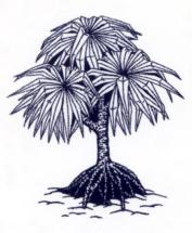 hala_tree